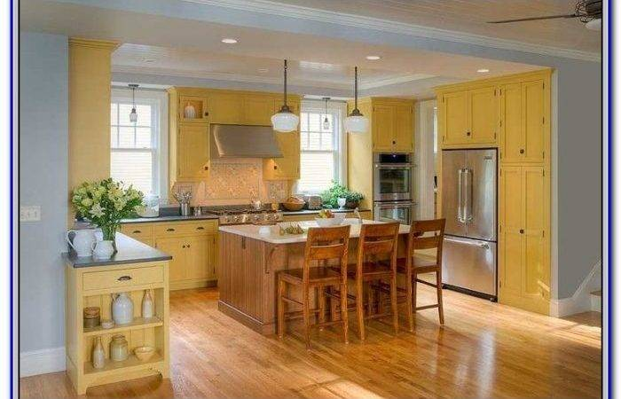 Accent Colors Yellow Walls Painting Home Design