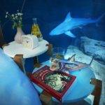 Airbnb Launches Its First Underwater Bedroom Guests