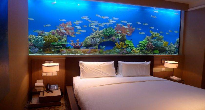 Amazing Home Wall Aquariums Design Ideas Youtube