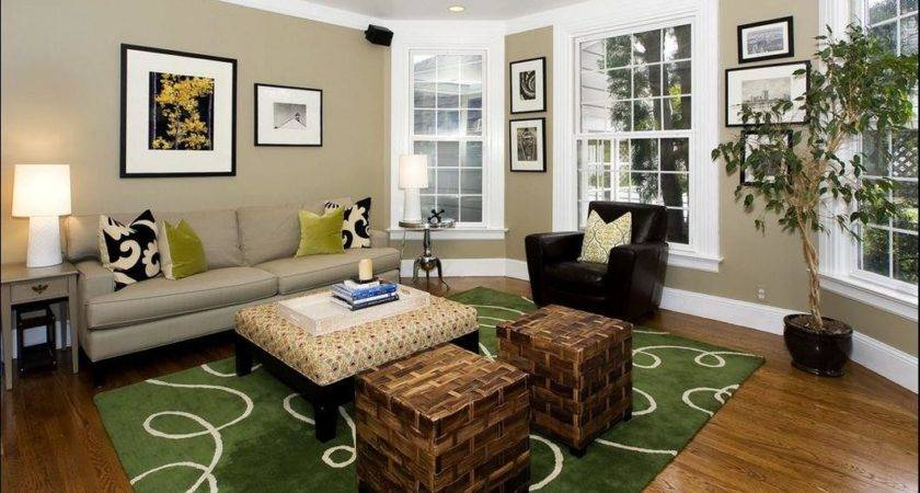 Amazing Wooden Flooring Sofa Green Rug Colorful Classic