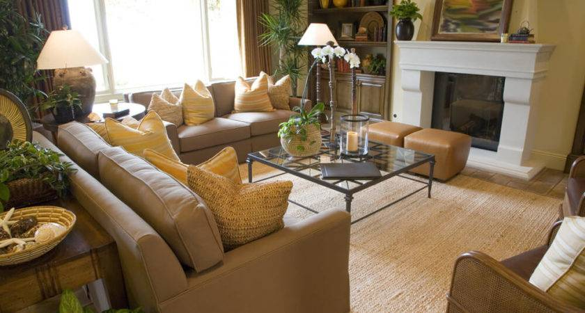 Amusing Light Brown Couch Living Room Ideas Your