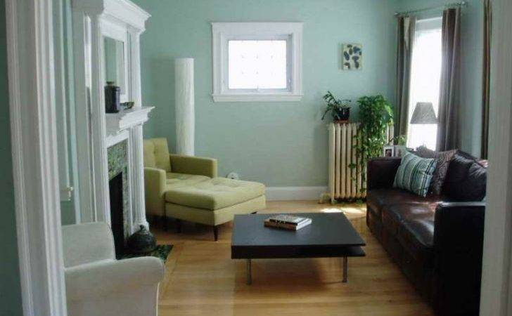 Appealing Paint Colors Interior Earth Tone