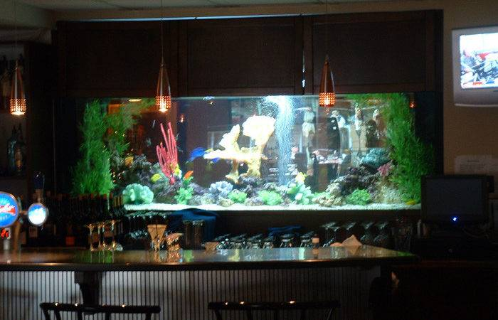 Aquarium Effects Design Installation