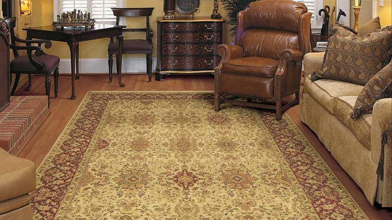 Area Rugs Buy Cheap Design
