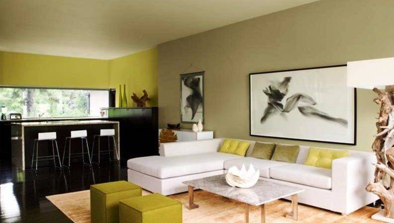 Attractive Living Room Colour Ideas
