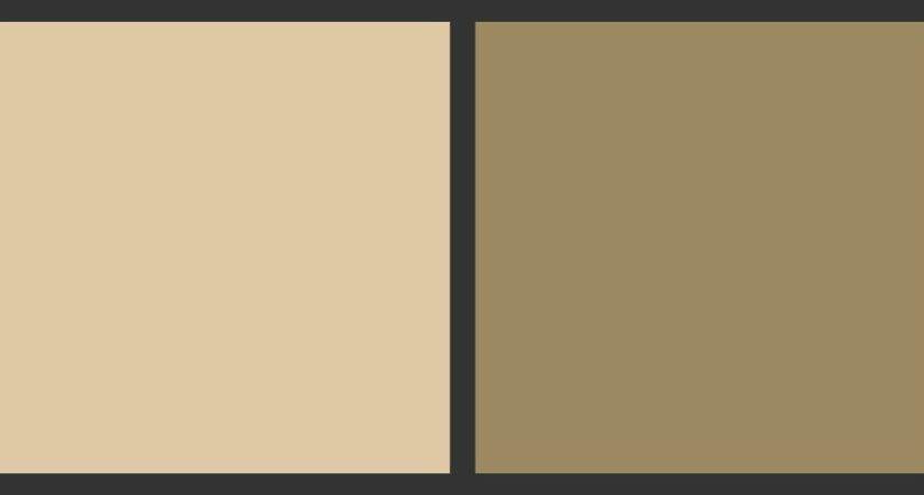 Awesome Light Brown Paint Chocolate