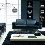 Awesome Natuzzi Frank Living Room Black Sofa Grey