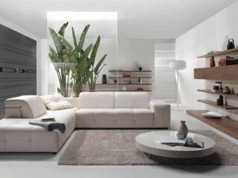 Awesome Styles Contemporary Living Room
