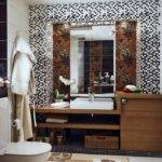 Bathroom Designs Brown Best Cars Reviews