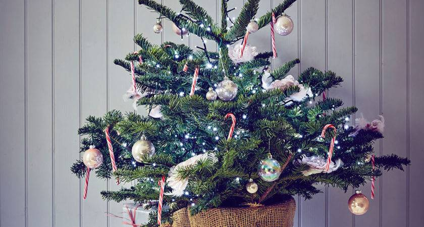 Beautiful Christmas Decorating Ideas Real Homes