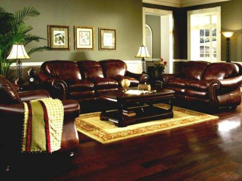 Beauty Best Color Paint Living Room Brown Sofa