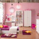 Bedroom Hot Pink Zebra Decor Contemporary Purple