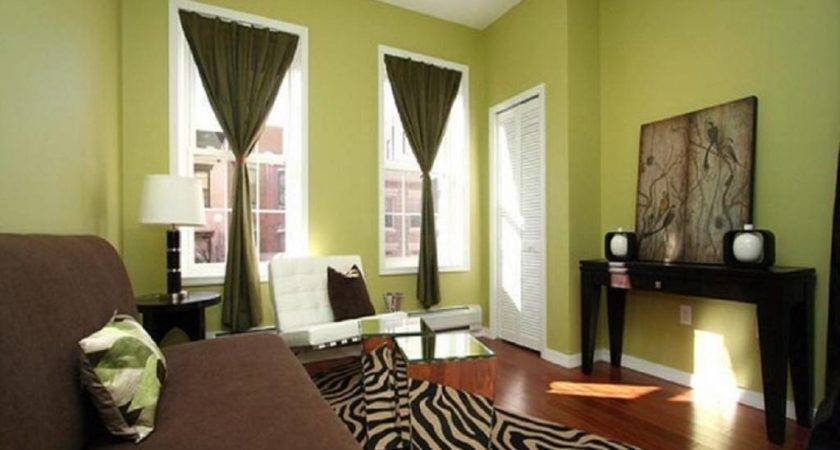 Best Color Small Rooms Living Room Sage Green