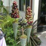 Best Edible Topiaries Wreathes Centerpieces