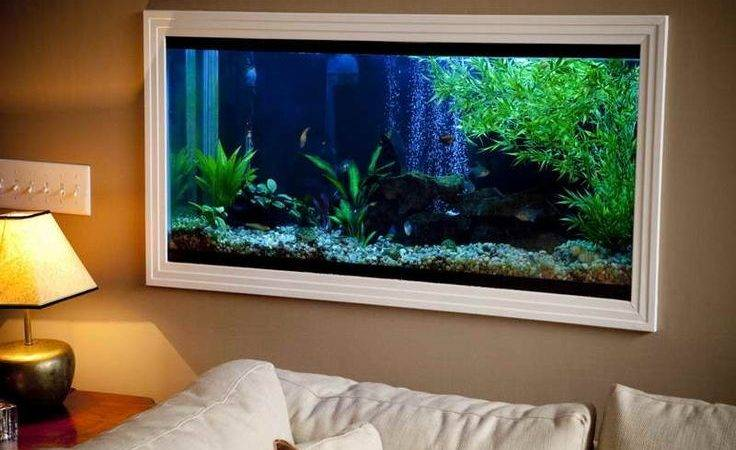 Best Fish Tank Wall Ideas Pinterest Aquarium