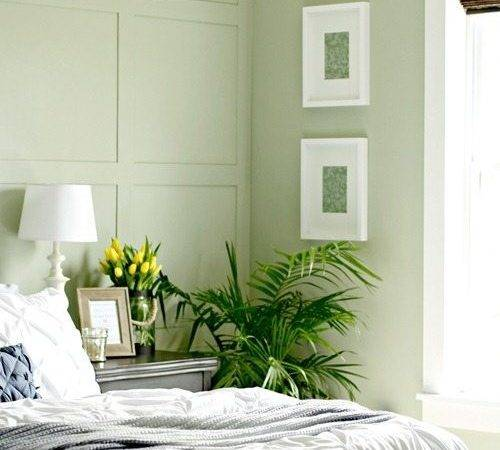 Best Green Paint Colors Spruce Your Walls