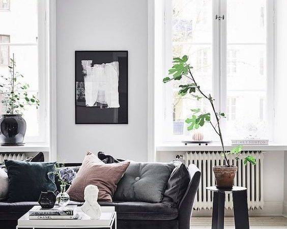 Best Grey Velvet Sofa Ideas Pinterest Gray