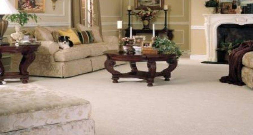 Best Ideas Carpet Living Room