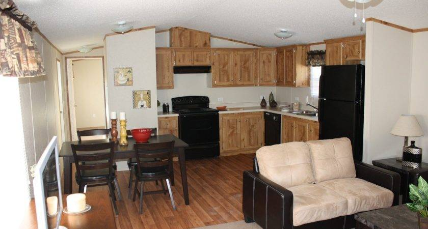 Best Interior Mobile Home