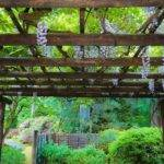 Best Japanese Gardens Pinterest