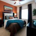 Best Orange Accent Walls Ideas Pinterest