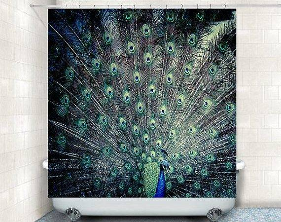 Best Peacock Theme Party Supplies Pinterest