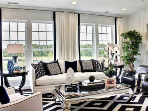 Black White Living Room Decoration