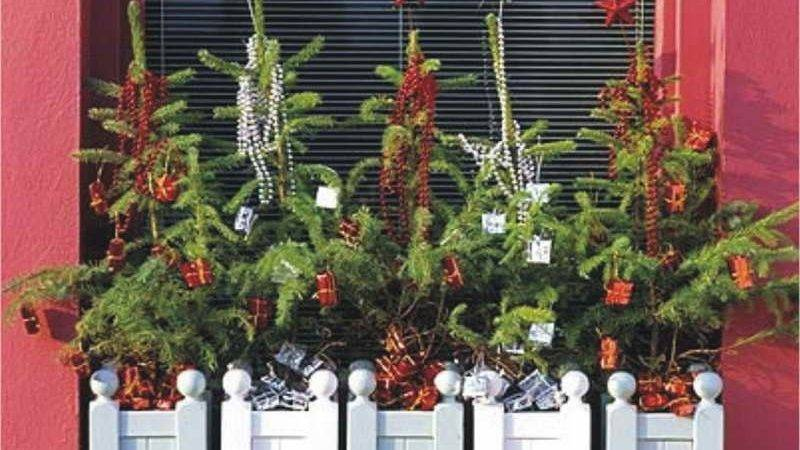 Bloombety Great Outdoor Winter Decorations Wonderful