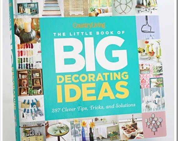 Book Review Giveaway Little Big
