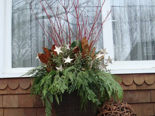 Budget Outdoor Christmas Decor Outdoortheme
