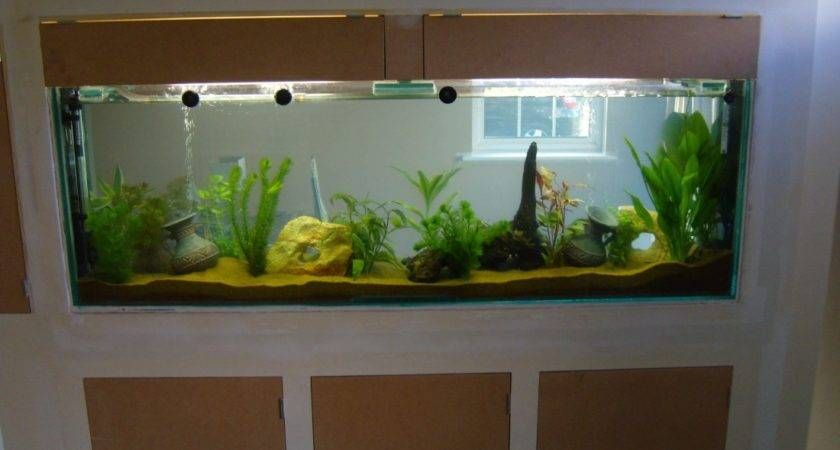 Built Wall Fish Tank Finishing Touch Building Services