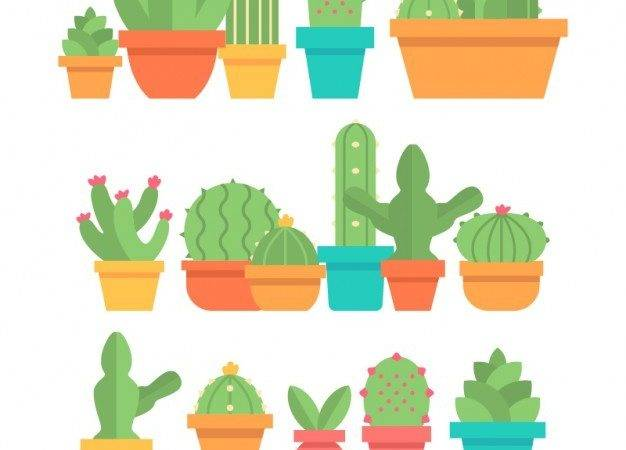 Collection Cactus Flowerpot Flat Design Vector