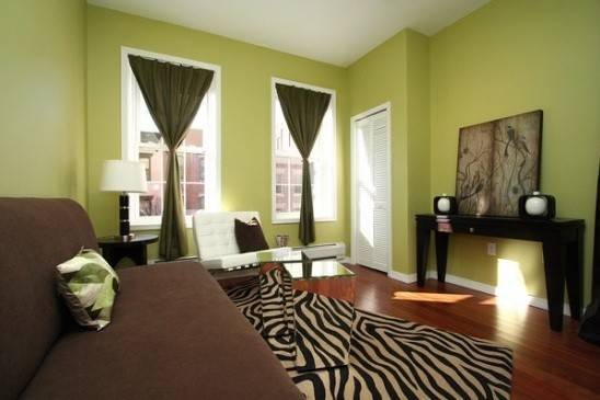 Color Ideas Living Room Walls Green Natural Colors