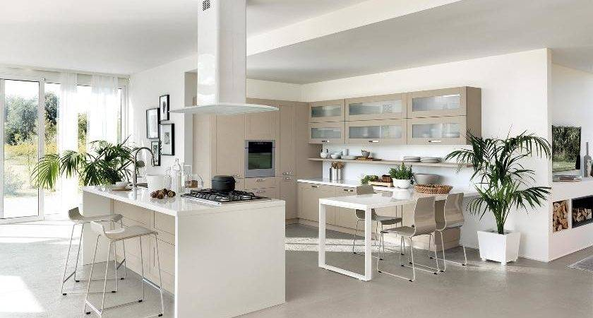 Contemporary Kitchens Large Small Spaces Home