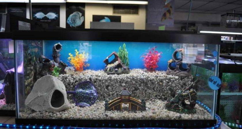 Cool Fish Tank Themes Pixshark