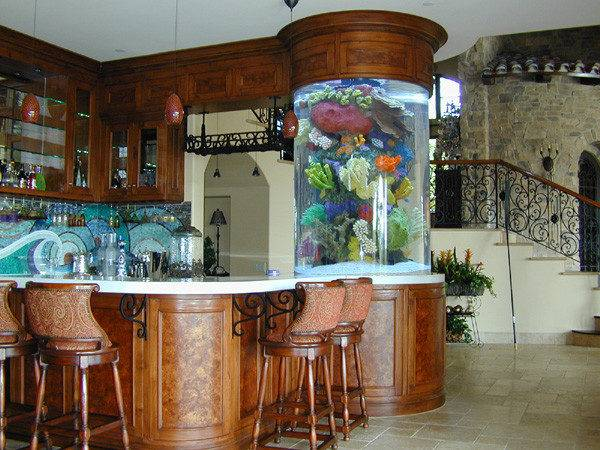 Cool Fish Tanks Pinterest Aquarium