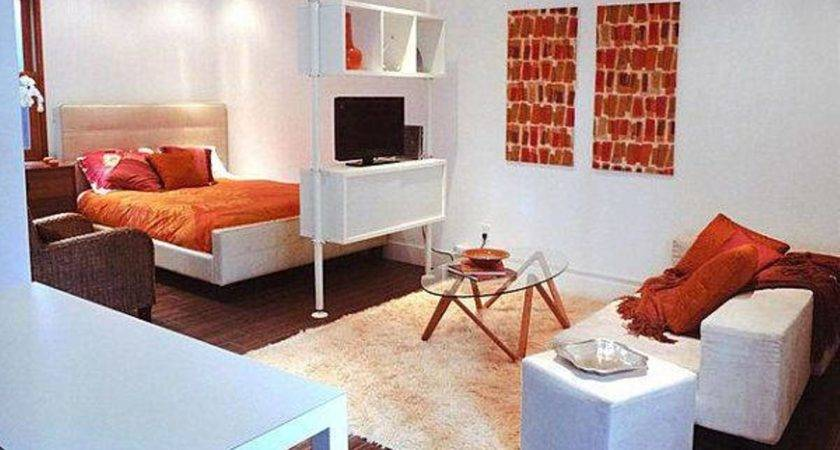 Cool One Bedroom Apartment Layout Ideas Greenvirals Style