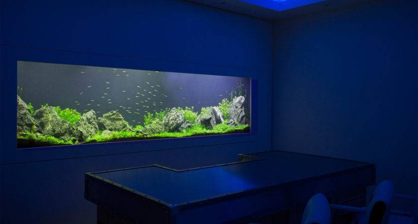 Cuisine Fish Tank Ideas Cool Decoration