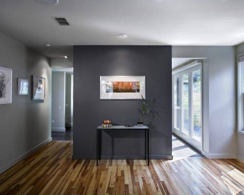 Dark Grey Accent Wall Houzz