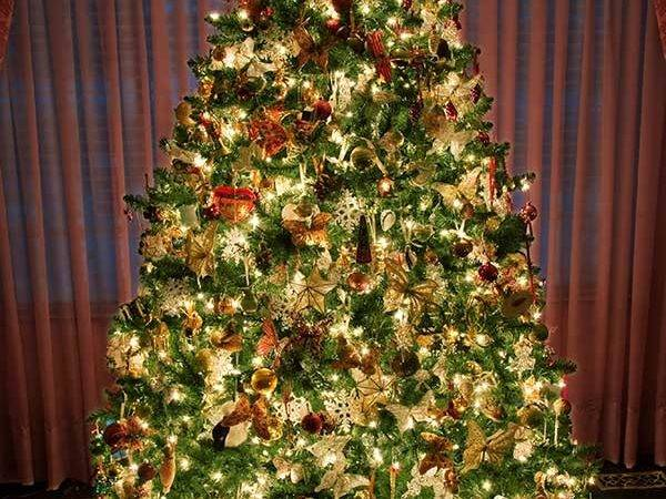 Decorated Christmas Tree Wondrous Pics
