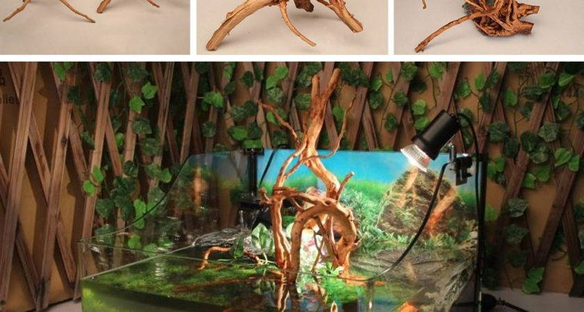 Driftwood Natural Wood Tree Trunk Plants Fish Tank Decor