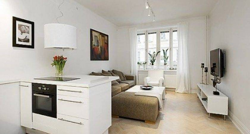 Efficient Apartment Small One Room Design