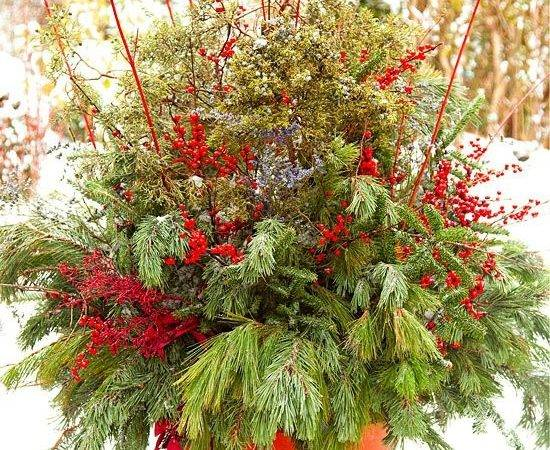 Energize Winter Cottage Garden Containers
