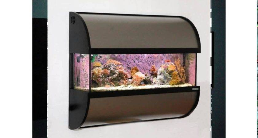 Fish Tank Wall Mounted Aquariums Aquarium Design Ideas