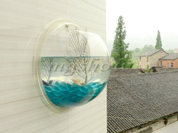 Fish Wall Mounted Bowl Aquarium Hanging Tank Plant