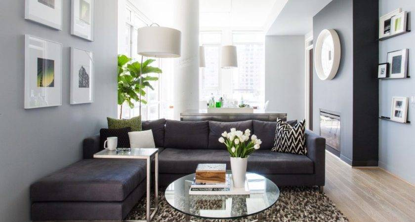 Gray Couch Tan Walls Living Room Transitional