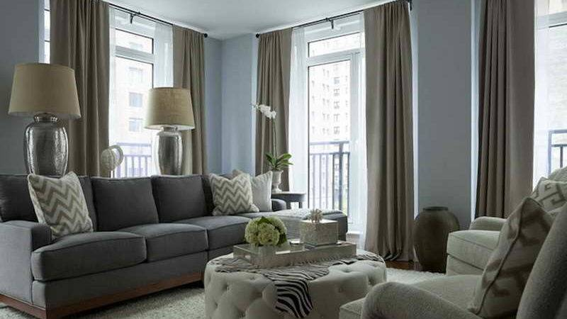 Grey Color Scheme Living Room Dark Brown Hairs