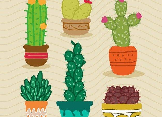 Hand Drawn Cactus Design Vector
