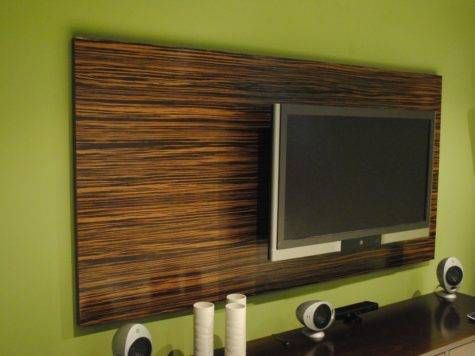 Hand Made Macassar Ebony Wood Wall Panel Paradigm