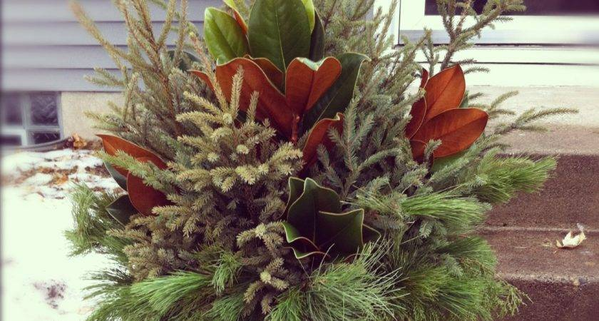 Holiday Pot Ideas Bloomingdesign